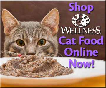 Shop Wellness Cat Food Online Now