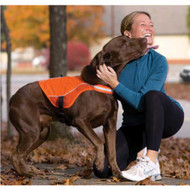 Kurgo Reflect and Protect Active Dog Vests