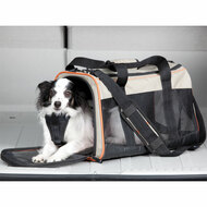 Kurgo Wander Carrier collapsible pet carrier