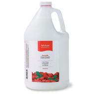 Oster HydroSurge Raspberry DermaSilk Conditioner Gallon