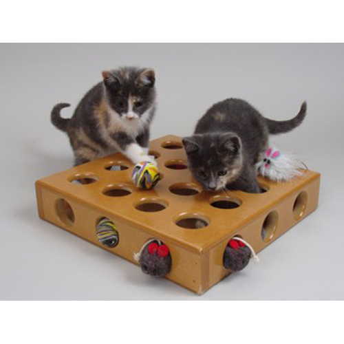 Peek A Prize Toy Box : Peek a prize toy box for cats
