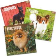 2016 Dog Calendars