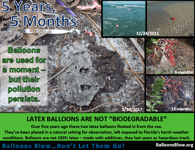 balloons-not-biodegradable-5-years-5-months.png
