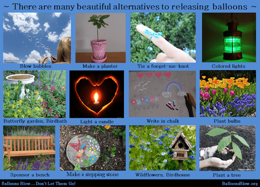 many-beautiful-alternatives-to-releasing-balloons.png