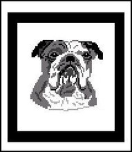 """Bulldog Crochet Afghan Graph Pattern.  All done in single crochet, changing colors as you go along.  Drop one color, pull in the next.  Medium ability.  Size works up to be approx. 40 x 60"""".  Graph is 64 stitches wide by 104 stitches high.  Then you crochet 22 rows (or more) around the outside edge including a border.  Complete instructions are included, a full size graph, and a Helpful Hints page. DOWNLOAD WILL COME TO YOU IN AN EMAIL ORDER CONFIRMATION.  Just click """"Download Files"""" and Enjoy!"""
