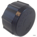 Waterway Plastics   Drain Cap with Gasket Assembly   550-0240