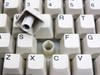 Keytronic E03601Q  AT Keyboard