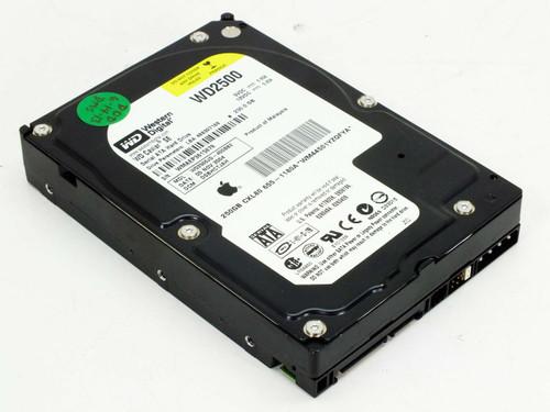 """Western Digital WD2500JD-40GBB2 250GB 3.5"""" SATA Hard Drive WD2500"""