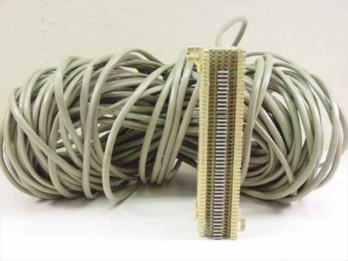 Generic R66MI-50  Patch Panel w/ long cord