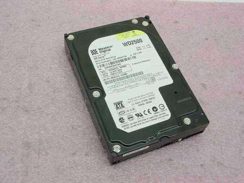 """Western Digital WD2500JD  250.0GB 3.5"""" SATA Hard Drive"""