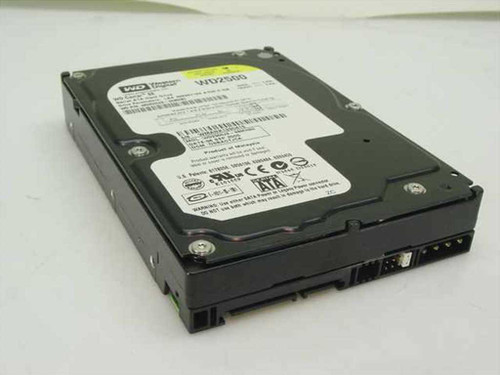 "Western Digital WD2500JS  250.0GB 3.5"" SATA Hard Drive"
