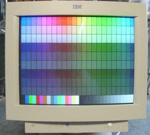 "IBM 6549-OAN  19"" SVGA Monitor"