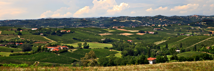 Monferrato skyline