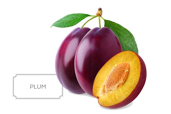 plum-a.jpg