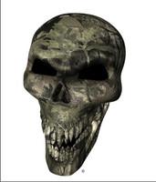 Backwood Camo Skull