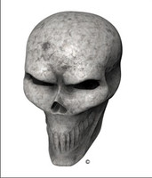 Bone Skull Angle 1