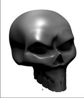 Carbon Fiber Angle Skull 2