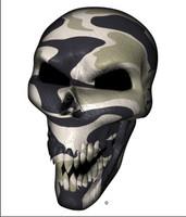 Desert Camo Skull