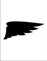 Wings 20
