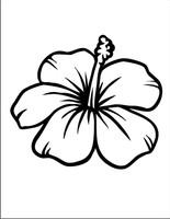 Flower #25
