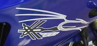 Dragon with Yamaha Symbol