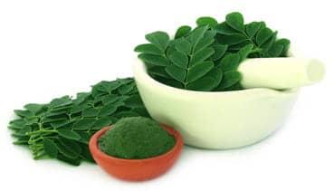 moringa-leaf-powder.jpg