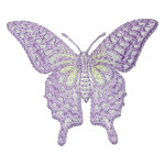 """Iron On Patch Applique - Butterfly Swallowtail 2 3/4"""""""