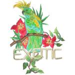 Iron On Patch Applique - Exotic Floral Parrot