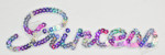 Iron On Patch Applique - Sequin Word PRINCESS Multi