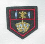 Iron On Patch Applique - Crest Fleur De Lys & Crown