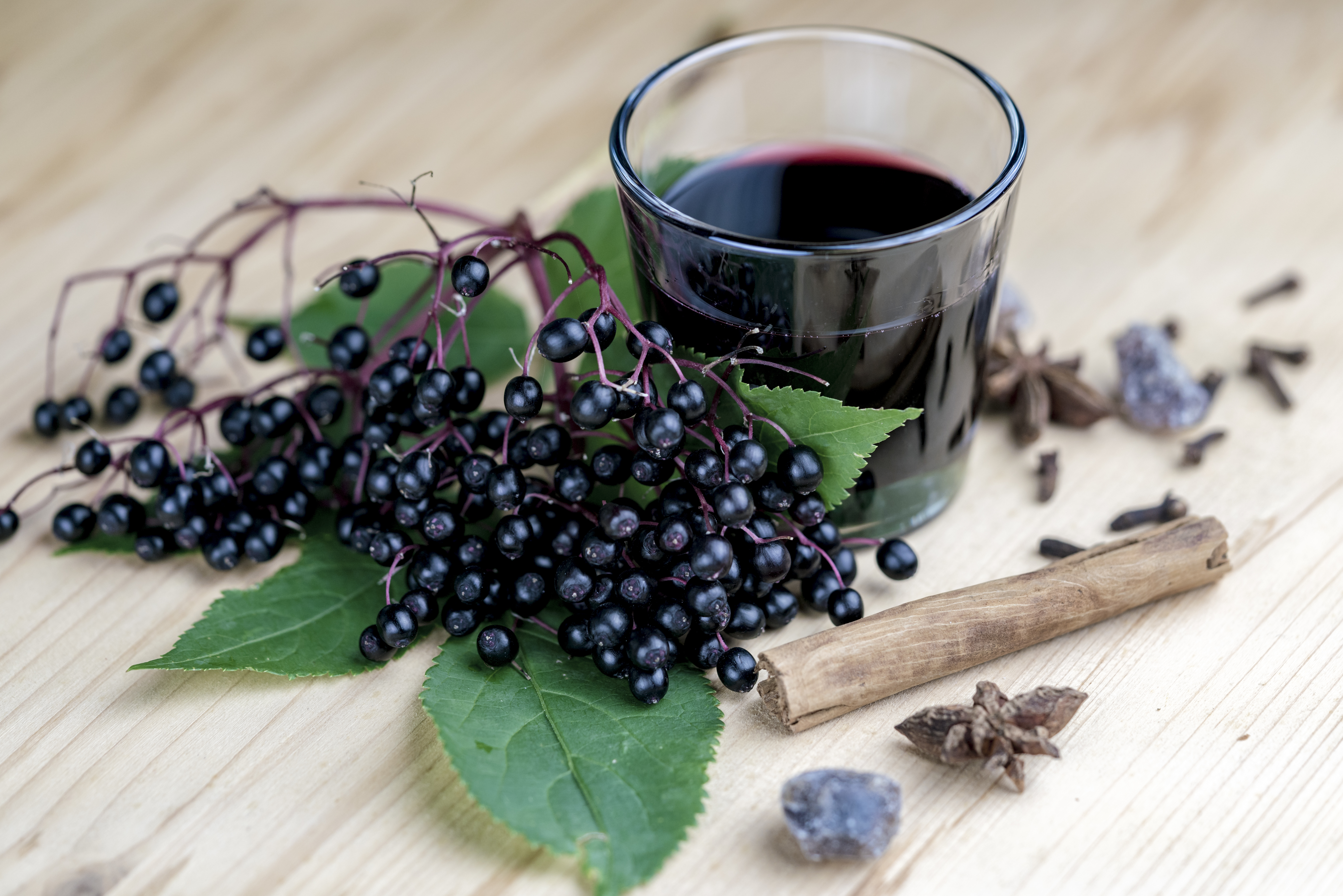 yns-elderberry-shot.jpg