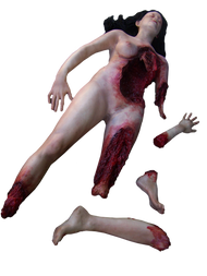 Deluxe Wounded Female