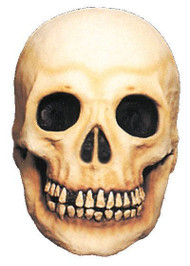 Latex Skull Halloween Prop (Large)