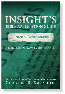 Insight's Bible Application Guide 1: Genesis - Deuteronomy.  Paperback Book