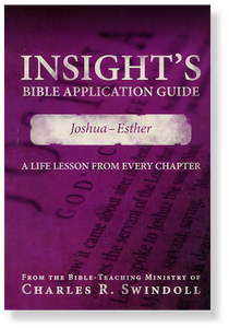 Insight's Bible Application Guide 2: Joshua - Esther.  Paperback Book
