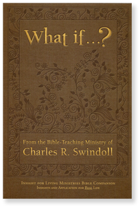 What if ...?   Bible Companion