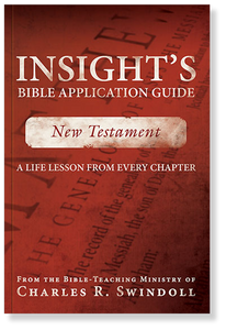 Insight's Bible Application Guide Vol 5: New Testament.  Paperback Book