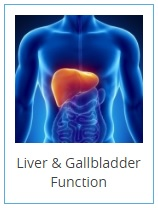 liver-and-gallbladder-2-.jpg