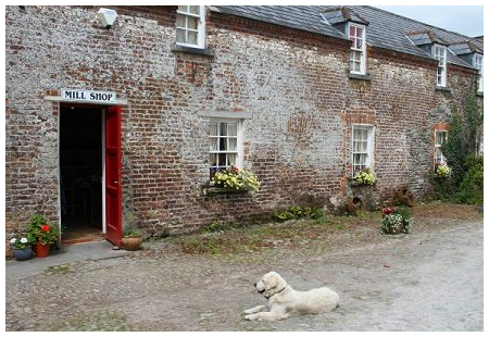 kerry-woolen-mills-2.png