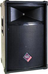 Nady THS-1512 2-way PA speaker, perfect for all venues, 320 Watts! - FREE SHIPPING!