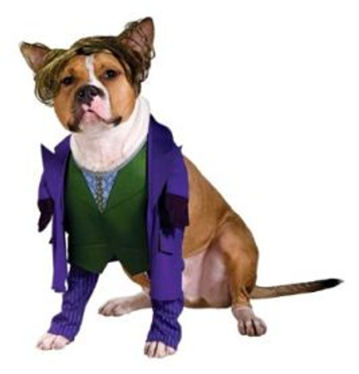 The Joker Pet Costume