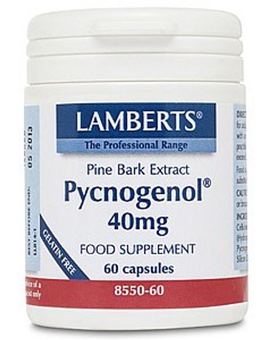Lamberts Pycnogenol 40mg 60 Capsules