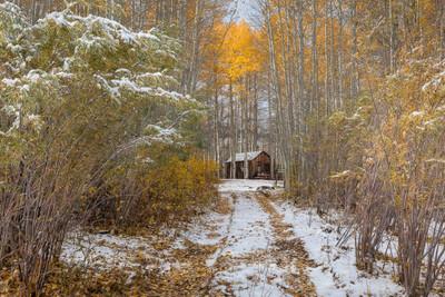 Hidden Cabin in the Aspens