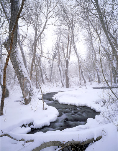 McGee Creek Winter