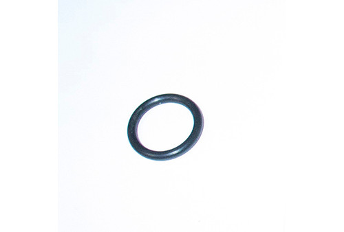 Pentair Pool Products   FILTER PART    RTL / RCF CHECK VALVE Oring   172451