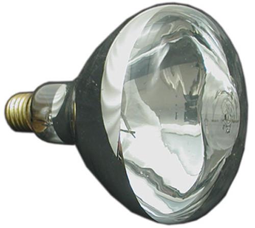 JACUZZI/CARVIN | 12V, 300W LIGHT BULB | 23-4943-05-R