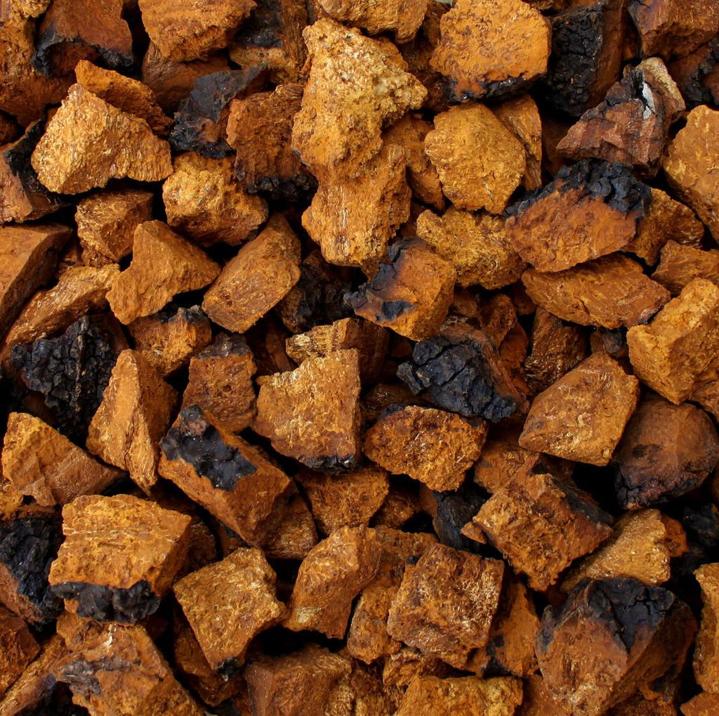 CHAGA MUSHROOM, wild harvested, chunks or pieces