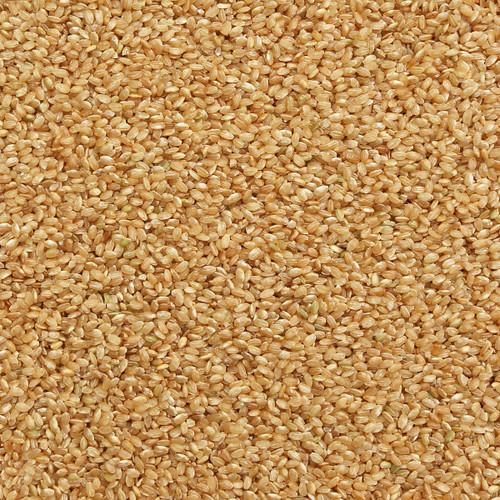 ORGANIC RICE, short grain, brown