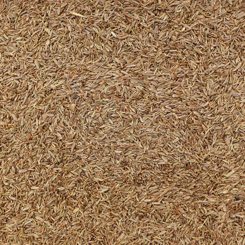 ORGANIC CARAWAY SEEDS, whole