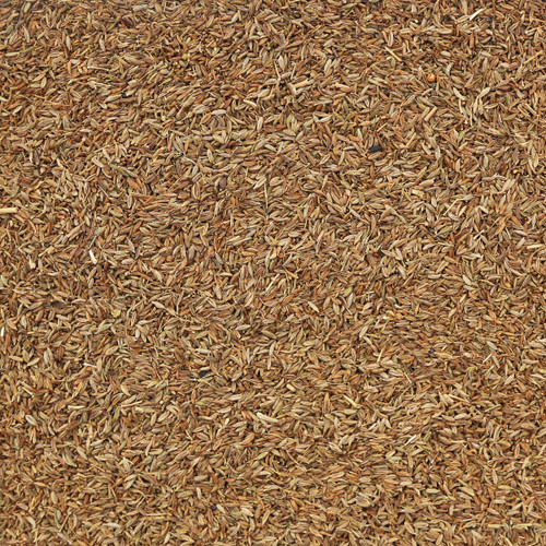ORGANIC CUMIN SEEDS, whole